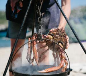 seaside-food-foraging